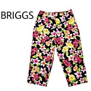 Briggs New York